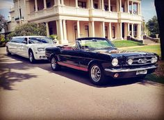 Mustangs in Black 1966 GT Convertible Ford Mustang at Kamesburgh Gardens with a stretch limousine for Anthony and Irena's wedding.
