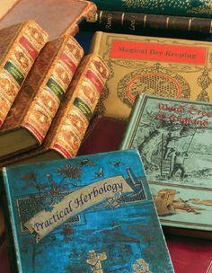 Harry Potter school books!