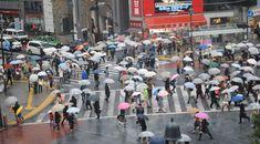 Shibuya Station Intersection, Tokyo Packing for Japan tips