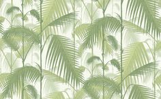 Palm Jungle (95/1001) - Cole & Son Wallpapers - A multi layered design of palm leaves creating a dense jungle of foliage, shown here in leafy green on a ivory background. Please order a sample for true colour match. Paste-the-wall product.
