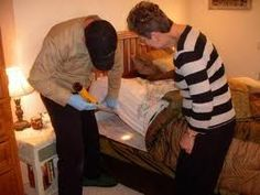 Midwest Bed Bug Services is the premier bed bug exterminator in the midwest. Heat Treatment Bed Bugs is our main specialty. Bed Bug Control, Best Pest Control, Bug Exterminator, Rid Of Bed Bugs, Pest Solutions, Garden Guide, Insect Repellent, Organic Gardening
