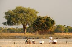 This comfortable, traditional-style bush camp overlooks a remote lagoon in a game-rich area of Zambia's South Luangwa National Park. Time And Tide, Holiday Travel, Lodges, Safari, Remote, National Parks, To Go, Africa, Relax