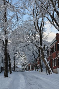 Good morning from Nantucket Island -- see more photos of our island cloaked in newly fallen snow at Nantucket.net