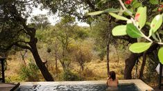Where to Stay South Africa Safari Honeymoon