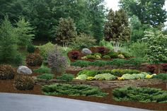 Here's a gorgeous hillside landscaped with rock walls, trees, and lots of shrubs.