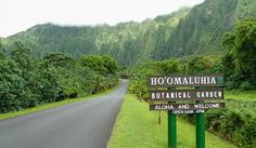 Discover what Hoomaluhia Botanical Gardens has to offer before hiking it's trail. Learn about this Hawaii trail, and also on how to get there.
