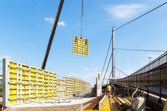 SOLID architecture ZT GmbH - VOEST Donaubrücke A7 Bypassbrücken Linz - Danube Bridges Foto: Mike Wolf