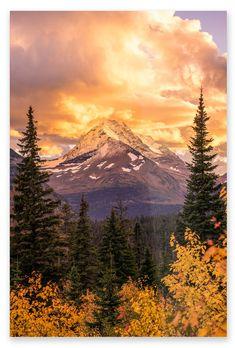 Peak of Autumn