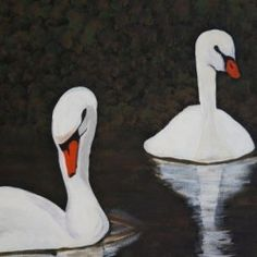 schwäne - swans - Babetts Bildergalerie - bird, feathers, swans, lake The picture was painted with acrylic on canvas. Brushed Metal, Floating Frame, Stretched Canvas Prints, Canvas Artwork, Wood Print, Bird, Poster, Animals, Drawing Pictures