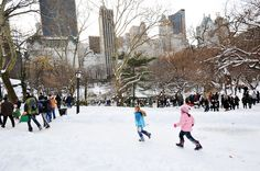 When it snows in NYC, @Central Park becomes a veritable winter wonderland. [Photo: Julienne Schaer/NYC & Company]