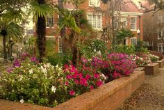 Spring Garden @ University of Florida  Gainesville, FL