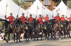 Royal Canadian Mounted Police Musical Ride (Langley, British Columbia) Photo Ursula Maxwell-Lewis