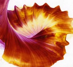 Amazing Art Encaustic - Craft Courses - The site for craft courses across the UK