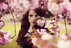 Cherry Tree Beauty - My Modern Met