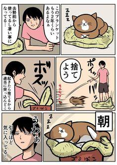 《貓的日常生活網漫》真實重現貓奴們水深火熱的生活www