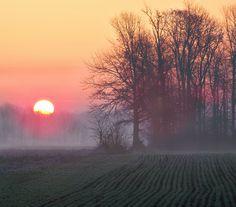 Indiana Spring Morn
