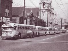 Twenty (20) chartered buses (not all of them visible in this photograph) line up in front of St. Elizabeth of Hungary Church for the trip to the 1961 Ward 16 community picnic held at Euclid Beach Park. The picnic was hosted by long-time Hungarian-American Cleveland City Councilman Jack P. Russell.  Photo by Karl J. Rauschkolb,   Cleveland Public Library NEA Picture Collection  Date: 1961-07-28