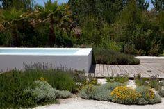 Inspiring Landscape Project in Alentejo, Portugal: Garden in Comporta Hillside Garden, Sloped Garden, Garden Pool, Above Ground Swimming Pools, Above Ground Pool, In Ground Pools, Raised Pools, Pool Water Features, Mediterranean Garden