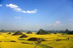 Luoping (China)  Der Landkreis Luoping im Osten der Provinz Yunnan ist bekannt für seine Hammer-Rapsfelder. Und wer dachte, in China gäbe man nichts auf Gedöns wie Naturschutzgebiete, der irrt. Das hier ist eins.