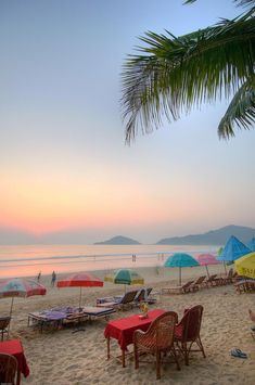 head to a yoga retreat on palolem beach in the south of goa, india
