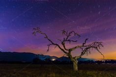 Check out star trails by Nat  on Creative Market