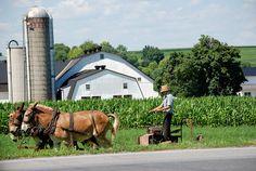 Lancaster county Pa....Lapp farm
