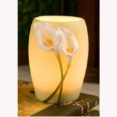 This Calla Lily memory lamp is hand painted and made of bonded marble. The call lily are raised and Clay Flowers, Flower Vases, Watermelon Carving Easy, Japanese Lighting, Glow Lamp, Decorative Floor Lamps, Night Lamps, Night Lights, Jars