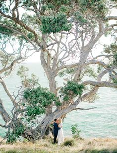 25 Jaw Dropping Spots That Will Make You Want to Elope | New Zealand