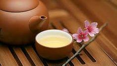 A fehér tea