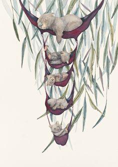 Australian Christmas Tree, Botanical Illustration, Illustration Art, Baby Wombat, Feeling Sleepy, Wool Embroidery, Gentleness, Australian Animals, Pictures To Draw