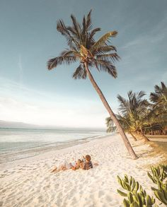 Mauritius Honeymoon, Travel Couple, Beach Photos, Resort Spa, Luxury Travel, Beautiful Landscapes, Beautiful World, Summer Vibes, Travel Photos