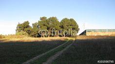 Paisajes #fotolia #fotografia #photography #photo #foto #microstock #buy #summer