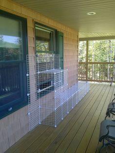 Make your own cat enclosure Diy Cat Enclosure, Outdoor Cat Enclosure, Cat Fence, Cat Cages, Cat Run, Outdoor Cats, Outdoor Cat Tunnel, Cat Towers, Gatos Cats