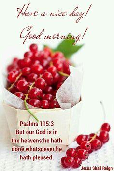 Psalms 115:3