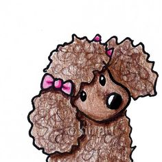 Original Art Illustration Chocolate Poodle dog ACEO    Artist signed & dated ORIGINAL Poodle dog breed art by childrens book Author & Illustrator, Kim