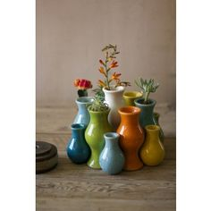 This makes a great single bud vase or add an assortment of different colors and sizes for variation. #paulmichaelcompany #colorful #summervase #springvase #greenthumb