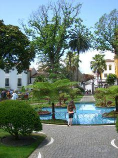 admiring the jardim  Terceira, Azores