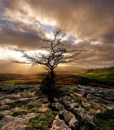 Yorkshire Dales landscape photography by MJ Turner Photography is beautiful landscape photography of Yorkshire Dales that captures every detail. Beautiful Landscape Photography, Love Photography, Beautiful Landscapes, Beautiful Moments, Life Is Beautiful, Beautiful Places, Pretty Pictures, Cool Photos, Yorkshire Dales