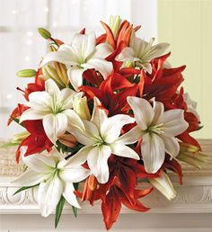 Lilies: these colors are beautiful!!