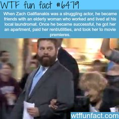 Zack Galifianakis - WTF fun facts | Follow @gwylio0148 or visit http://gwyl.io/ for more diy/kids/pets videos