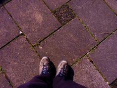 Taffy van Doorn - Klaar voor een wandeling #fromwhereistand #synchroonkijken
