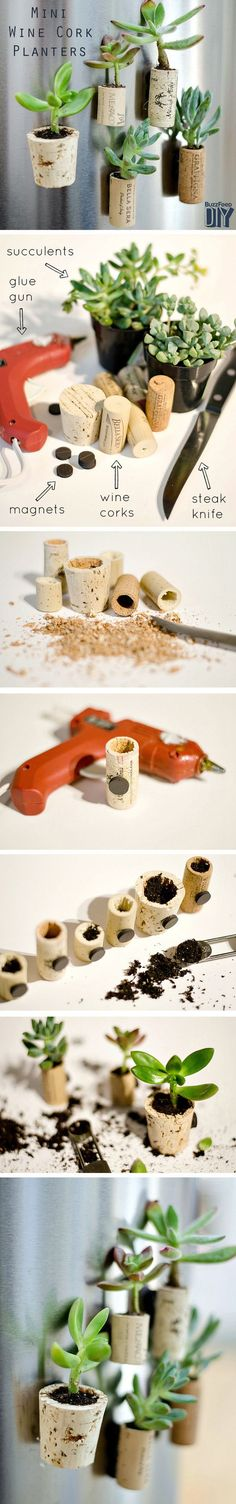 Make DIY planters for mini succulents using recycled wine corks. We love how they attach to the fridge with magnets.