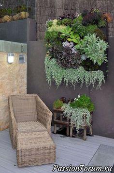 Pomysły na kreatywność (w domu, w ogrodzie-ogrodzie) - użytkownik Olga202202 w społeczności Boltalka w kategorii Interesujące pomysły na inspirację