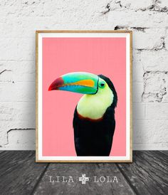 Print 145 - Bird afdrukken, tropische papegaai kunst aan de muur, toucan bird, tropisch decor, kleurrijke helder, roze zwart geel, vogel fotografie.