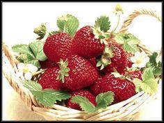 Strawberry. Morangos silvestres.  Provence Mon Amour.