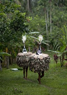 Tumbuan in Tolai tribe - Papua New Guinea oh doot duh doo, just strolling thru the forest...and comin' up on this. Whoa!