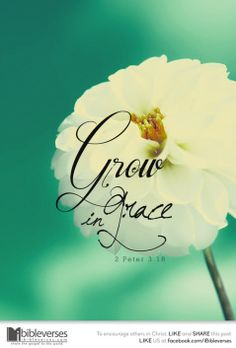 Grow in grace 2 Peter Christian Friends, Christian Quotes, Bible Verses Quotes, Bible Scriptures, Grace Quotes, Karma Quotes, Grow In Grace, 2 Peter, After Life