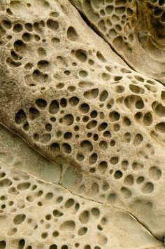 Sea Rocks pattern and texture Tactile Texture, Texture Art, Natural Forms, Natural Texture, Patterns In Nature, Textures Patterns, Performance Artistique, 3d Prints, Artwork