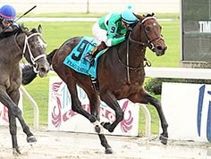 Exaggerator was the class of the field headed into the $1 million Delta Downs Jackpot Stakes (gr. III) on the merit of a fourth-place finish in the Breeders' Cup Juvenile (gr. I), and the Curlin colt delivered.