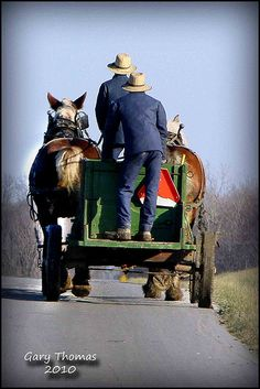 Amish: Farming the old-fashioned way. more horses less cars. horses paved the way.